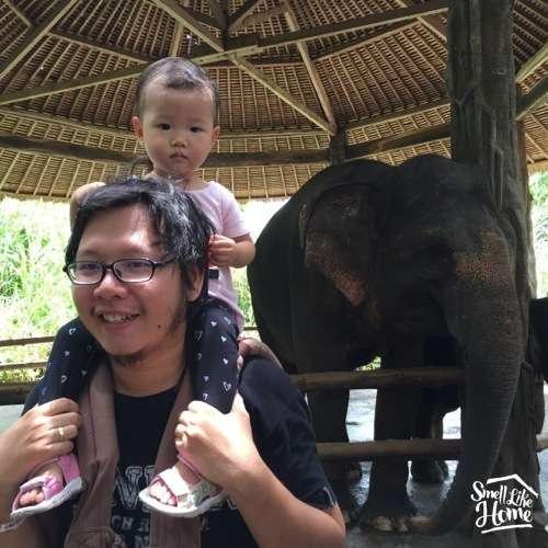 Elephant Bali Safari Marine Park