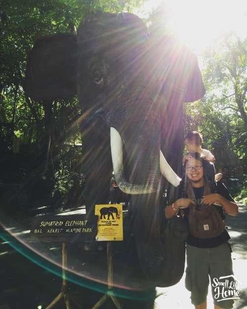 Iconic Elephant Statue in Bali Safari