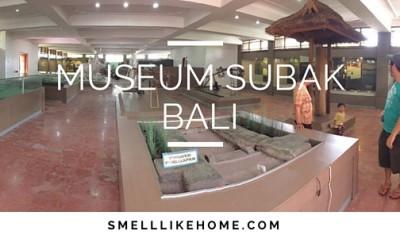 Museum Subak Bali Review