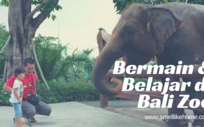 Bermain & Belajar di Bali Zoo