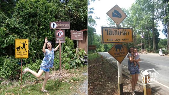 Petunjuk Jalan di Khao Yai National Park