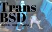 Jadwal Rute Trans BSD