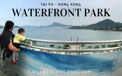 Tai Po Waterfront Park Review