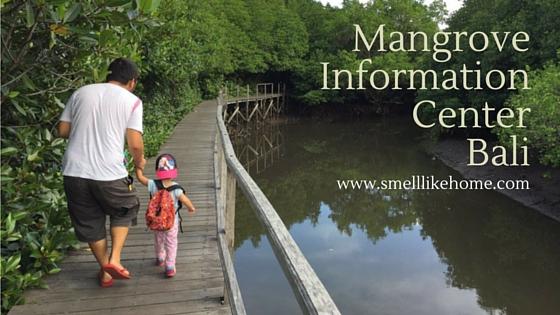 Mangrove Information Center Bali