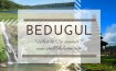 what to do around bedugul
