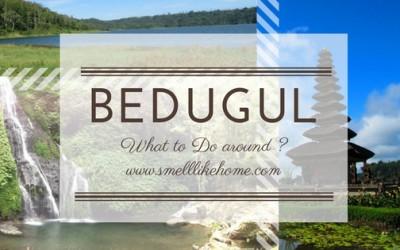 what to do around bedugul