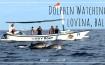 Dolphin Watching di Lovina Bali