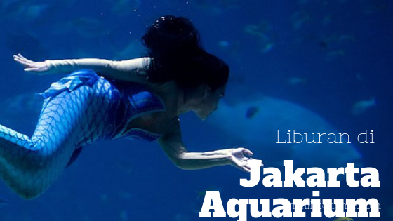 Jakarta Aquarium SLH