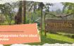 Sanggraloka Farm Ubud Review