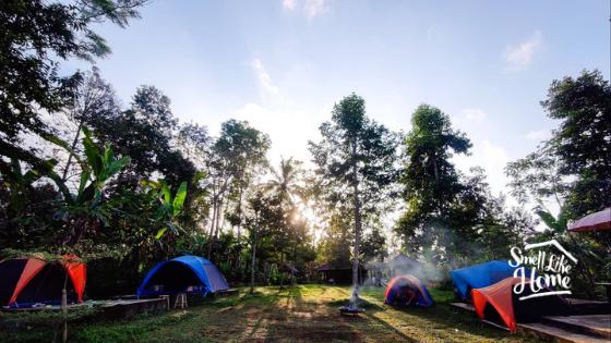 Tenda di Kamesta Camp Jatiluwih